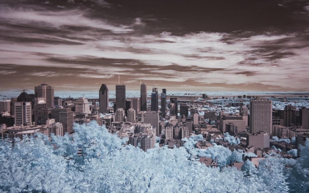 Le Slow Tourisme Lab, de l'Aube à Montréal